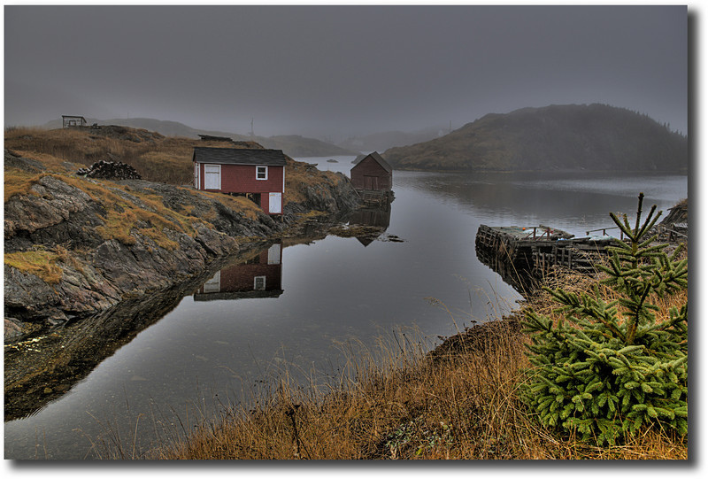 """Fog Bound"" Salt Harbour, Herring Neck"