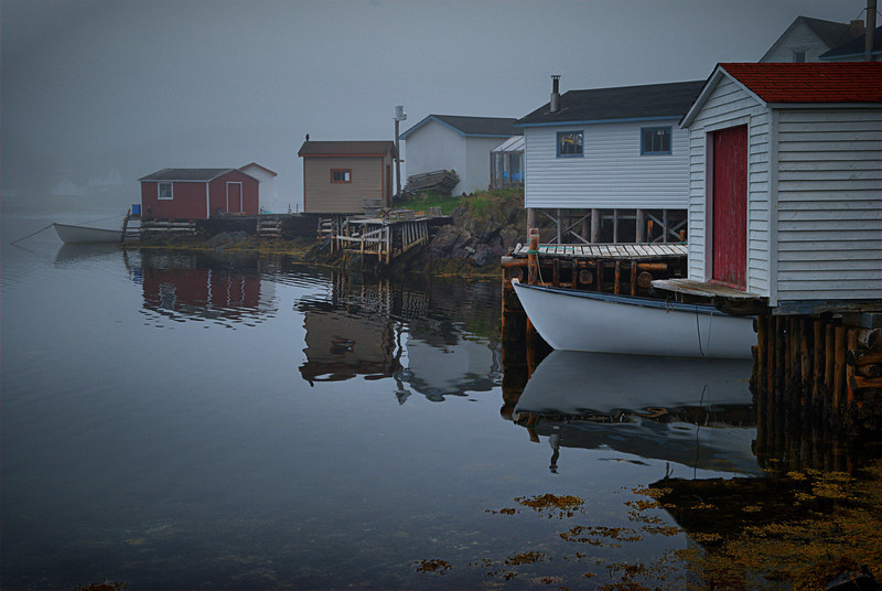 """Fog....Vignette Of The Sea""  Cobb's Arm, Newfoundland"