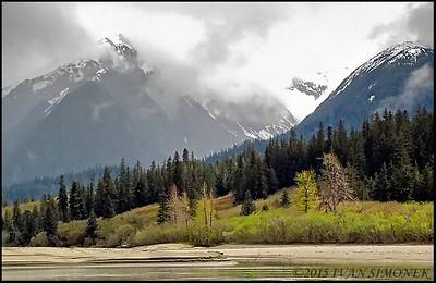 """STIKINE RIVER SPRING"",Alaska,USA."