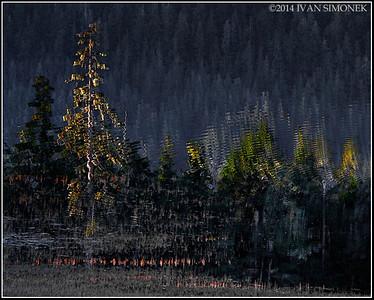 """PAT`S LAKE REFLECTION 2"",Wrangell,Alaska,USA."