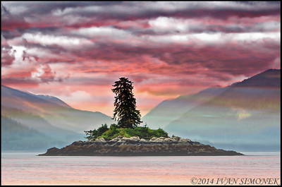 """DREAMSCAPE 2"",Two trees island,Alaska,USA.The scene is real but the colors are manipulated."