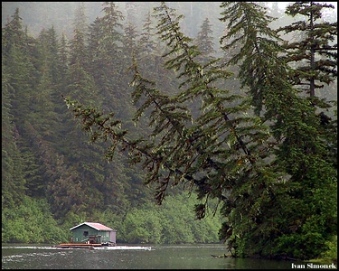 """OUT OF REACH..."", a floathouse anchored in one of many Stikine river sloughs,Alaska,USA..-----""K NEDOSAZENI..."",plovouci chajda zakotvena v jednom z postranich ramen reky Stikine,Aljaska,USA."