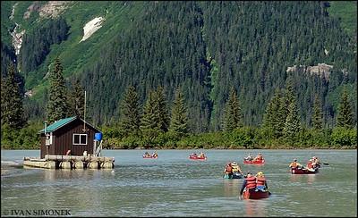 """""""SHAKES SLOUGH"""",Alaska,USA."""