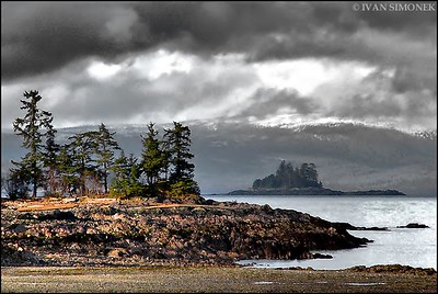 """A VIEW FROM COFFMAN COVE"",Prince Of Wales island,Alaska,USA."