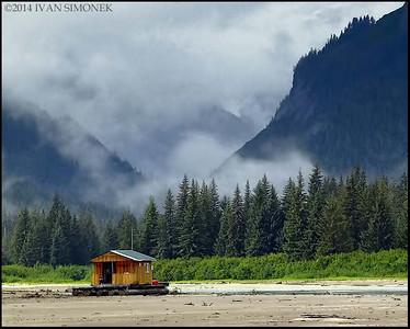 """""""WATER NEEDED"""",Shakes slough,Alaska,USA."""