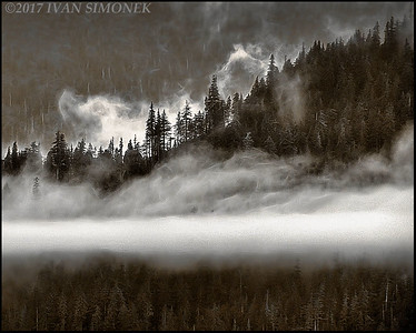 """MORNING  FOG""."