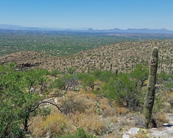 2017_ Tucson viewpoint_20170418_111132