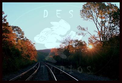 Misc Landscapes