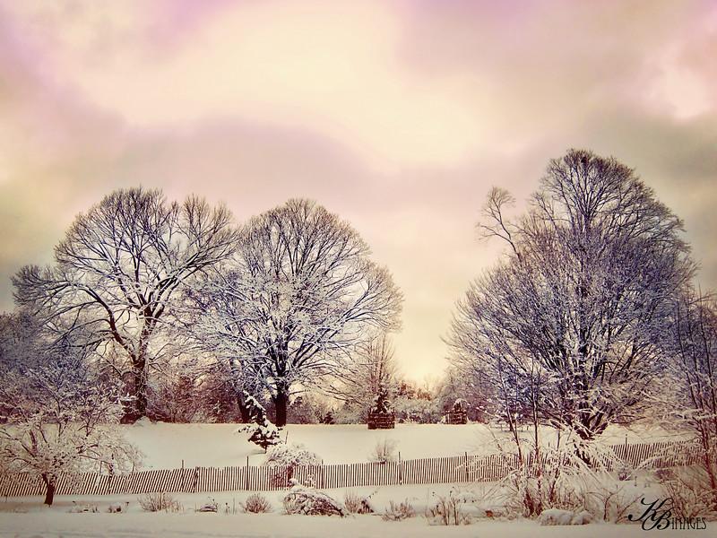 _ Snow-Boerner (234) COLOR