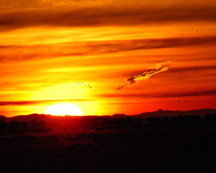 Sacramento Nat. Wildlife Ref. Sunrise 1