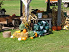 KINGSTON PENINSULA -  You can see the Albino Pumpkin in front! Bags of squashes for sale.