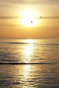 Sunrise_DSC9352 S
