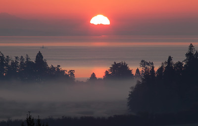 Sunrise from Old East Road, Central Saanich