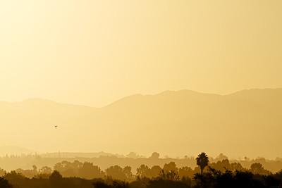 Saddleback Sunrise