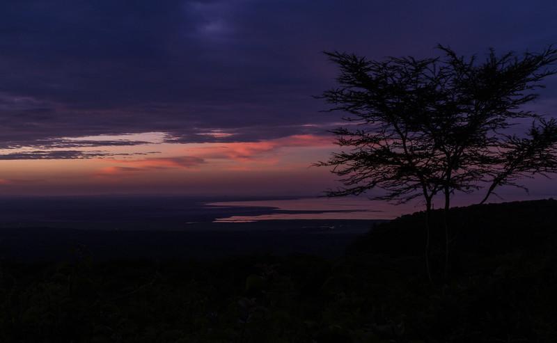 2013-01-Safari-1328