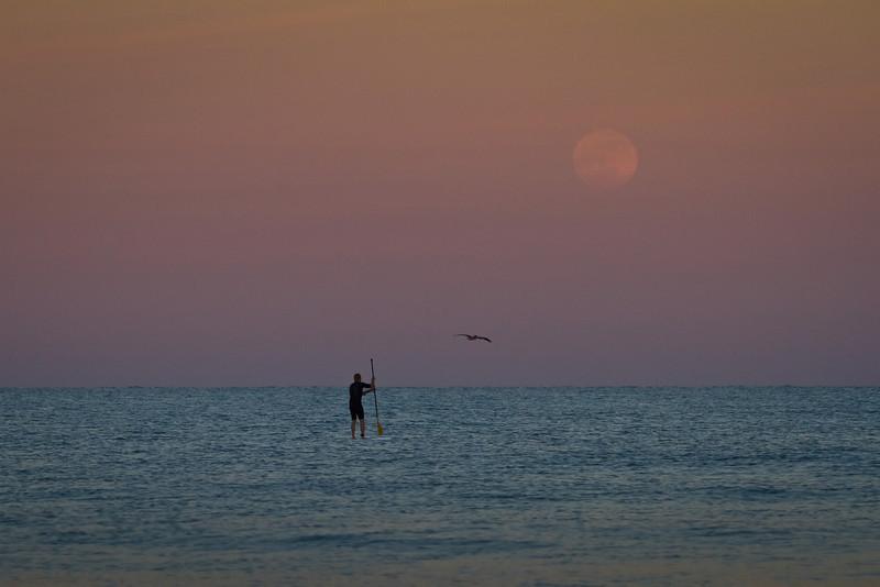 Follow the moon...............