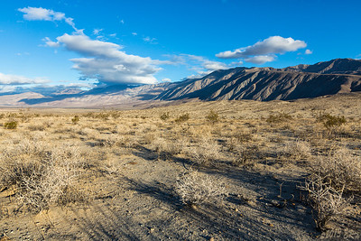 Valley just to the northeast of Borrego Springs.  Quiet and almost completely empty.  Or is it?