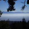 Looking out over Silicon Valley (San Jose area) from the Skyline Ridge trail.