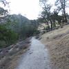 Evening hike at Pinnacles National Park