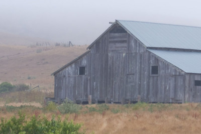 Foggy Barn in San Gregorio