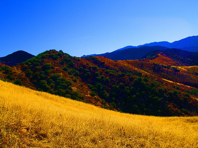 (photoshopped) grassy meadows of the Sierra Madre