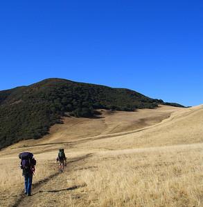 Fresh on the Jackson Trail, 4600 ft in elevation, Friday, November 14