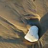 Sand & Stone
