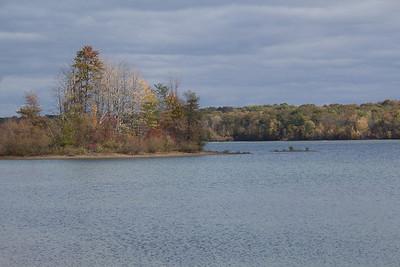 Sandhill Cranes La Due Reservoir