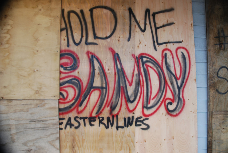Sandy2 - 2012 019