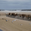 Sandy2 - 2012 003