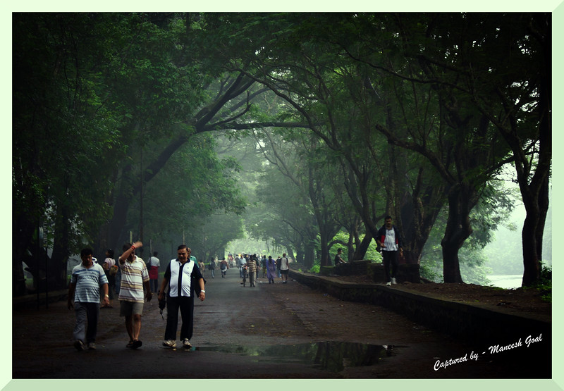 Morning walkers inside Sanjay Gandhi National Park