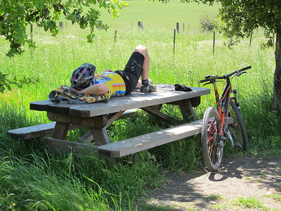 There were a lot of bicyclists out on the trail today. This one found one of the few shady spots on this side of the park to rest up from all those switchbacks.