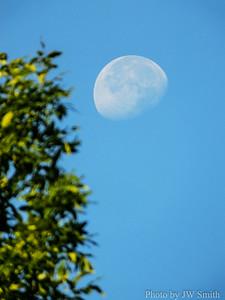 Moon (Lunas lunas)
