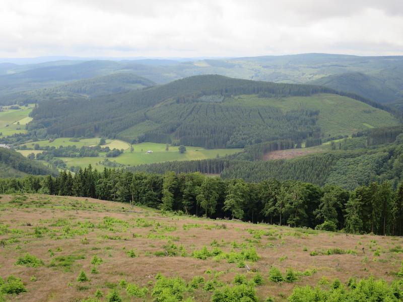 Rothaar Gebirge 450-841 mtr.
