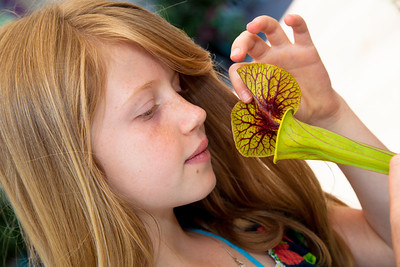 Gillian Perkins from Park City Utah examines a pitcher plant