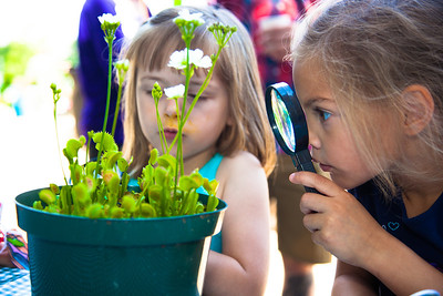 Vivian (age 4) from Falls Church VA and Kaylee (age 5) from North Carolina examine a Venus flytrap