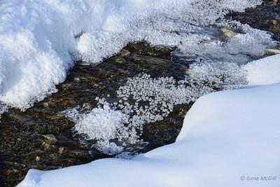 Hoar Frost, Savage River, Denali