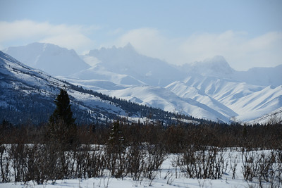 Fang Mountain, Savage River, Denali