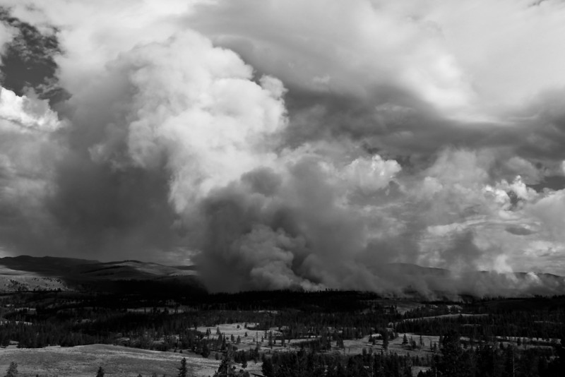 Yellowstone Wildfire, 2009