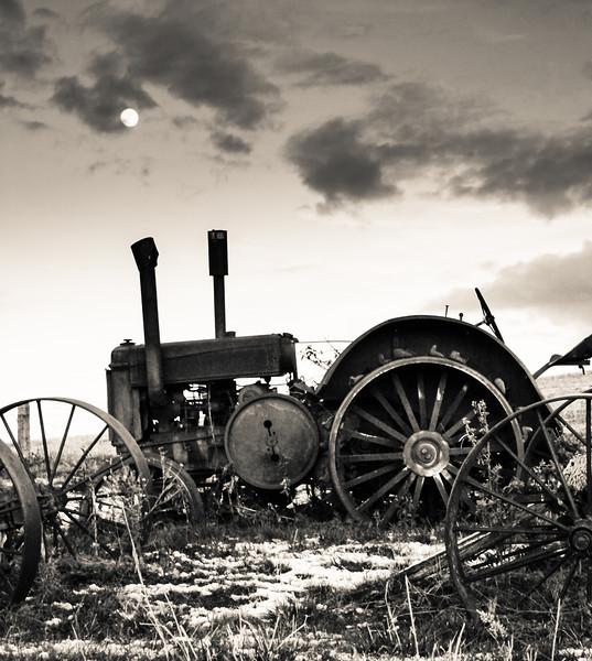 Camas Prairie