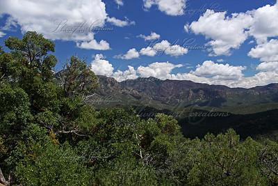 Coronado National Forest, AZ.  July 2010