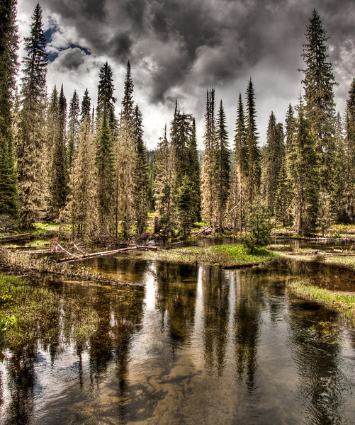 Eldorado Creek, Clearwater National Forest, Idaho.