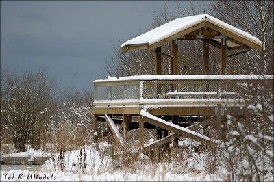 The new viewing platform at Reifel.  (The only real snow we saw this year)