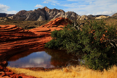 Snow Canyon After Rain