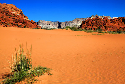 Sand Dunes at Snow Canyon, Utah