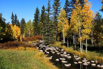 Duck Creek Near Cedar Breaks National Park in Utah