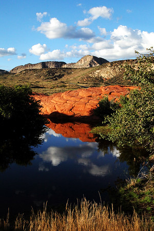 Snow Canyon Pond