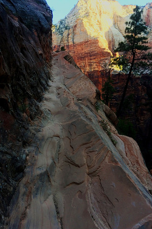 Hiking in Zion 1