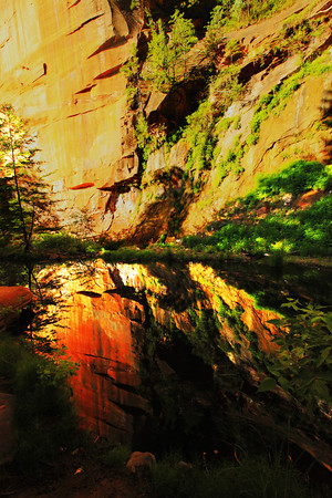 Reflections in Sedona