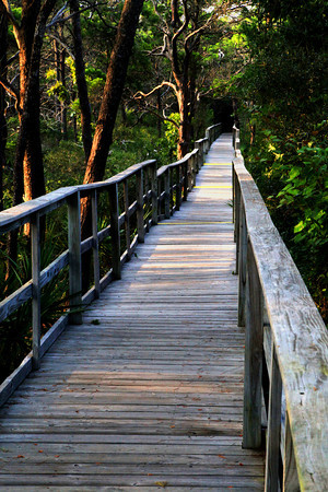 Boardwalk at Santa Rosa Island, Florida